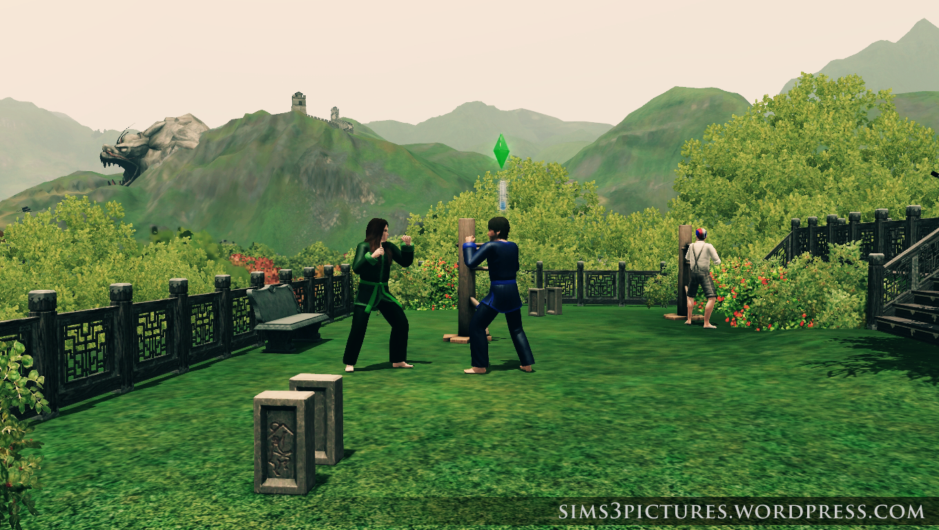 martial arts training in china sims 3 pictures. Black Bedroom Furniture Sets. Home Design Ideas